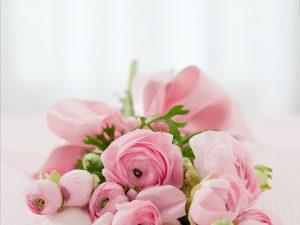 roses-142876_1280