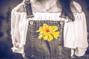 flower-1770516__340