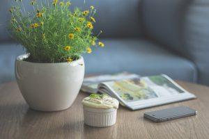 flowers-1150050__340